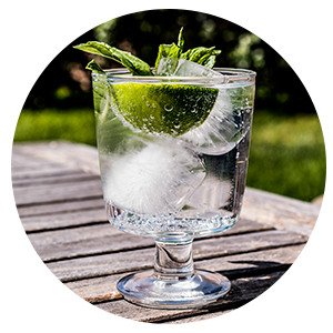 gin-2